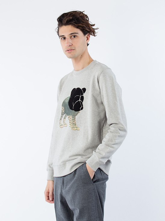 Sweatshirt W Teddy and Print