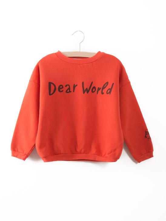 Sweatshirt Dear World